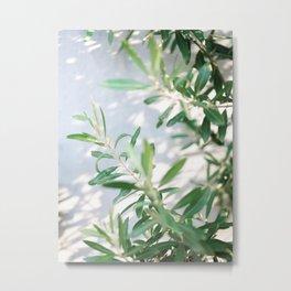 Olive Olive | Fine art botanical photography print | Pastel tones Metal Print