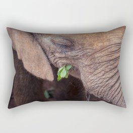 Solemn Moments Rectangular Pillow