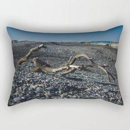 findings at ward beach Rectangular Pillow