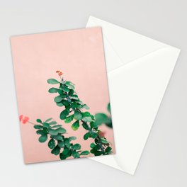 Floral photography print | Green on coral | Botanical photo art Stationery Cards