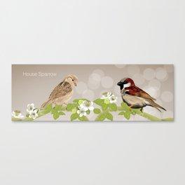 House Sparrows Canvas Print