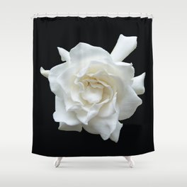 Gardenia on Black DPG150524 Shower Curtain