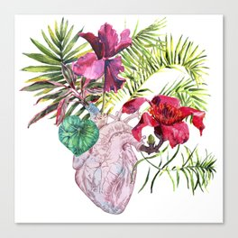 Human heart with flowers, plant and leaf, watercolor Canvas Print