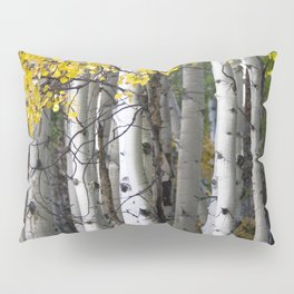 Yellow, Black, and White // Aspen Trees in Crested Butte Pillow Sham