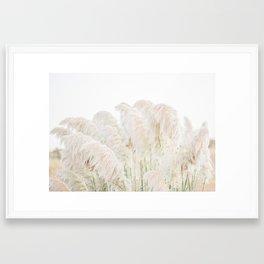 Natural Pampas Grass Framed Art Print
