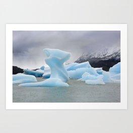 Grey Lake Ice Flows Art Print