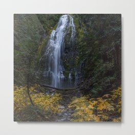 Fall colors at Proxy Falls Metal Print