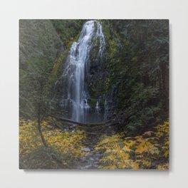Fall colors at Proxy Falls Metal Print