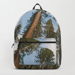 Redwood Sky - Giant Sequoia Trees Backpack