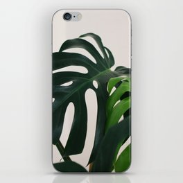 Minimalist Mid Century Scandinavian Style House Plant Mostera Green Leaf Zen Photo iPhone Skin