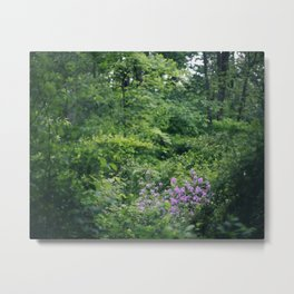 Purple Flowers Growing in the Forest Metal Print
