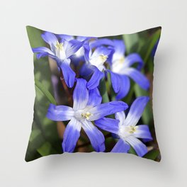 Early Spring Blue - Chionodoxa Throw Pillow