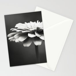 Black and White Flower Photography, Zinnia Floral Photograph, Neutral Nature Photo, Modern Botanical Stationery Cards