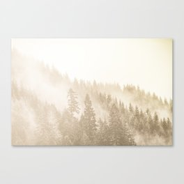 Vintage Sepia Fir Trees Canvas Print