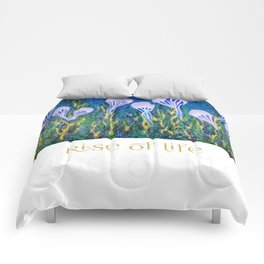 Rise of Life Comforters