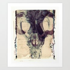 X Ray Terrestrial No. 2 Art Print