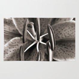 Lilly - Duplex Rug