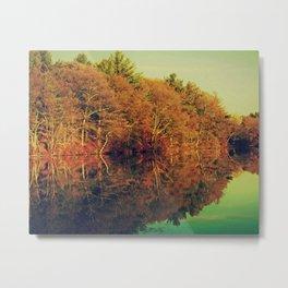 Hayes Pond En Chrome Metal Print
