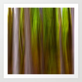 Abstract Trees Nature Photography Art Print
