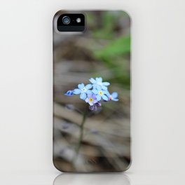 Many Forget-Me-Nots iPhone Case