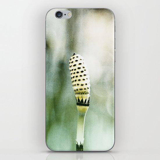 Cornwall iPhone & iPod Skin