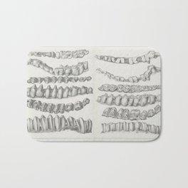 Vintage Print - American bisons, living and extinct (1876) - American Bison Teeth Bath Mat