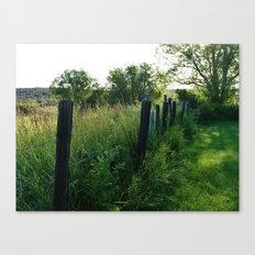 Verdant Morning Canvas Print