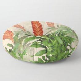 Vriesea fulgida old plate Floor Pillow
