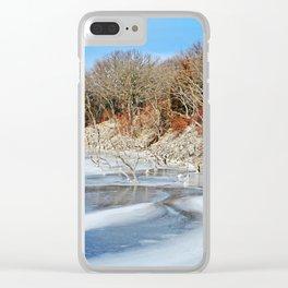 Brushy Creek Clear iPhone Case