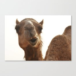 I am smiling! Canvas Print