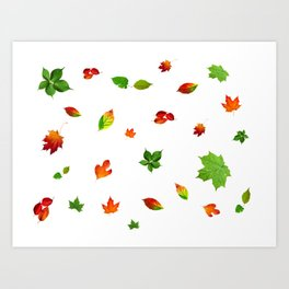 Colorul autumn leaves Art Print