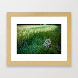 wheat and stone Framed Art Print