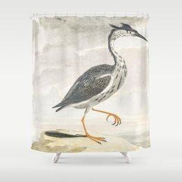 A Heron by Johan Teyler (1648-1709) Shower Curtain