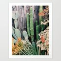 California Cactus by creaturecomforts