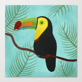 Keel-Billed Toucan Canvas Print