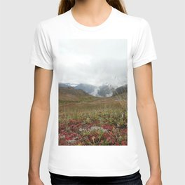 Mountain Crisp T-shirt