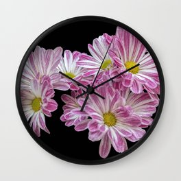 isolated daisy on black background Wall Clock