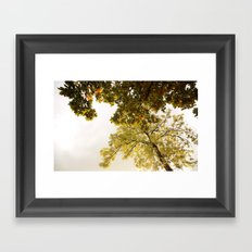 This fall with dreams Framed Art Print