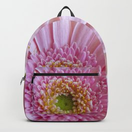 Pink Gerbera Flower in Detail with Yellow Bits Backpack
