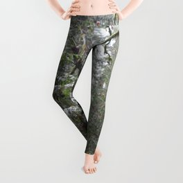 Shinrin-yoku Leggings