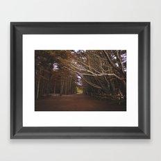 Light Fall Framed Art Print