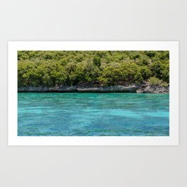 Turquoise Waters of Apo Island Art Print