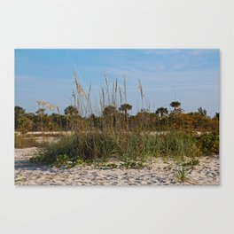 The Price is Sweet Canvas Print