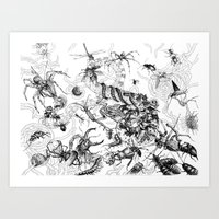 insects Art Prints featuring Insects by Emile Denis