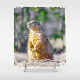 The Good Gopher Shower Curtain
