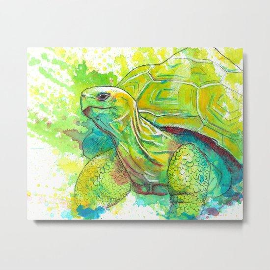 Giant Turtle Metal Print