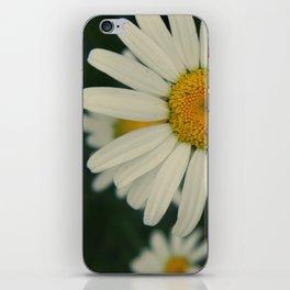 more daisies. iPhone Skin