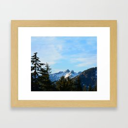 The Lions  Framed Art Print