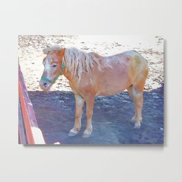 Horse by the fence 3 Metal Print
