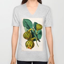 Fig plant, vintage illustration Unisex V-Neck